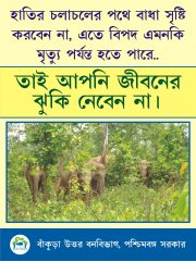 Poster 15x20_2no